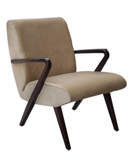 Accent Chair - Akro